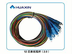 12芯束状尾纤(2.0)